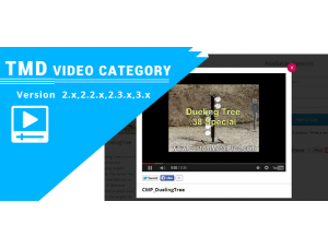 Youtube Gallery Module  (2.x & 3.x)